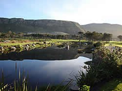 Hermanus Golf Course offers golfers of all levels a unique 18-hole golfing experience.