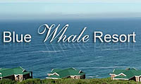 Blue Whale Resort Self-catering
