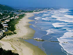 Cape Garden Route, MOssel Bay Information and Facts