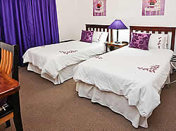 Best Little Guest House is a unique Bed and Breakfast situated in Oudtshoorn